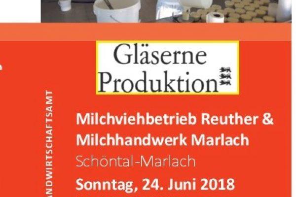 Gläserne Produktion – Ein Blick in die Hofmolkerei